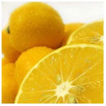 Meyer Lemon Olive Oil, 100 ml Case Pack 24 Bottles.